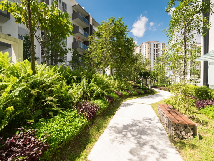 Nature Based Solutions (NBS) & How They Relate to Cities & Building Design